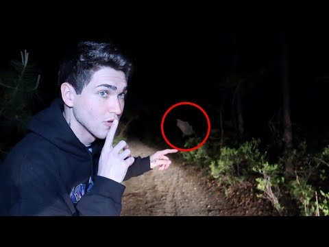 Hunting the Jersey Devil in the Pine Barrens Forest...