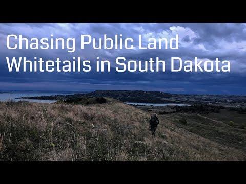Chasing Public Land Whitetails In South Dakota