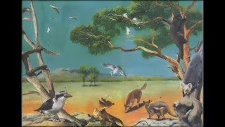 Животные Австралии. Интерактивное видео о животных Австралии.