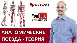 Анатомические поезда запись стрима от 01 12 2020 с Дмитрием Семёновым