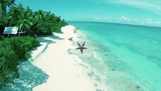 Travel with TINZ.co.nz Award Winning Travel Insurance