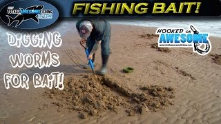 How to Dig the Best Fishing Bait - Worms | TAFishing