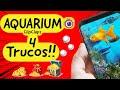 aquarium 🐠 CLIPCLAPS 🤑 como MULTIPLICAR tus INGRESOS con estos 4 trucos (ACTUALIZADO MAYO 2020)