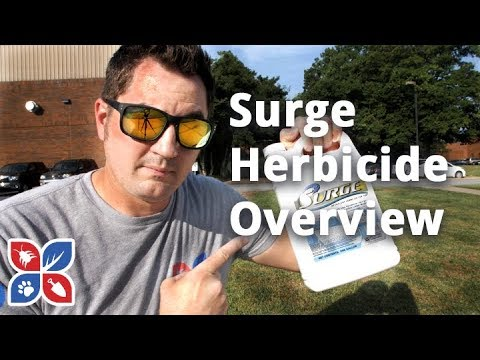 surge-broadleaf-herbicide---lawn-care-products-|-domyown.com