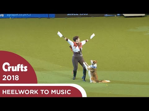 Heelwork to Music - Freestyle International Competition Part 3 | Crufts 2018