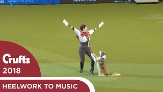 Heelwork to Music  Freestyle International Competition Part 3 | Crufts 2018