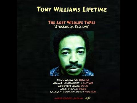 Tony Williams Lifetime Wildlife 1975