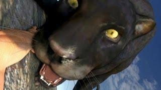 Far Cry 3 Slow Motion Animal Attacks