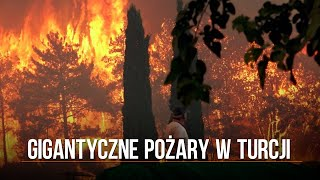 Turcja. Gigantyczne pożary w Bodrum, Manavgat i innych kurortach