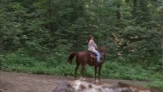 Усмерение лошади ... отрывок из фильма (Двое: Я и Моя Тень/It Takes Two)1995