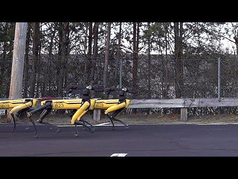 Dana McKenzie - Boston Dynamics' Creepy Robots Are Back And Herding
