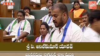 AP Assembly - Anil Kumar Yadav Takes Oath as MLA in Assembly | YSRCP Nellore MLA | YOYO TV