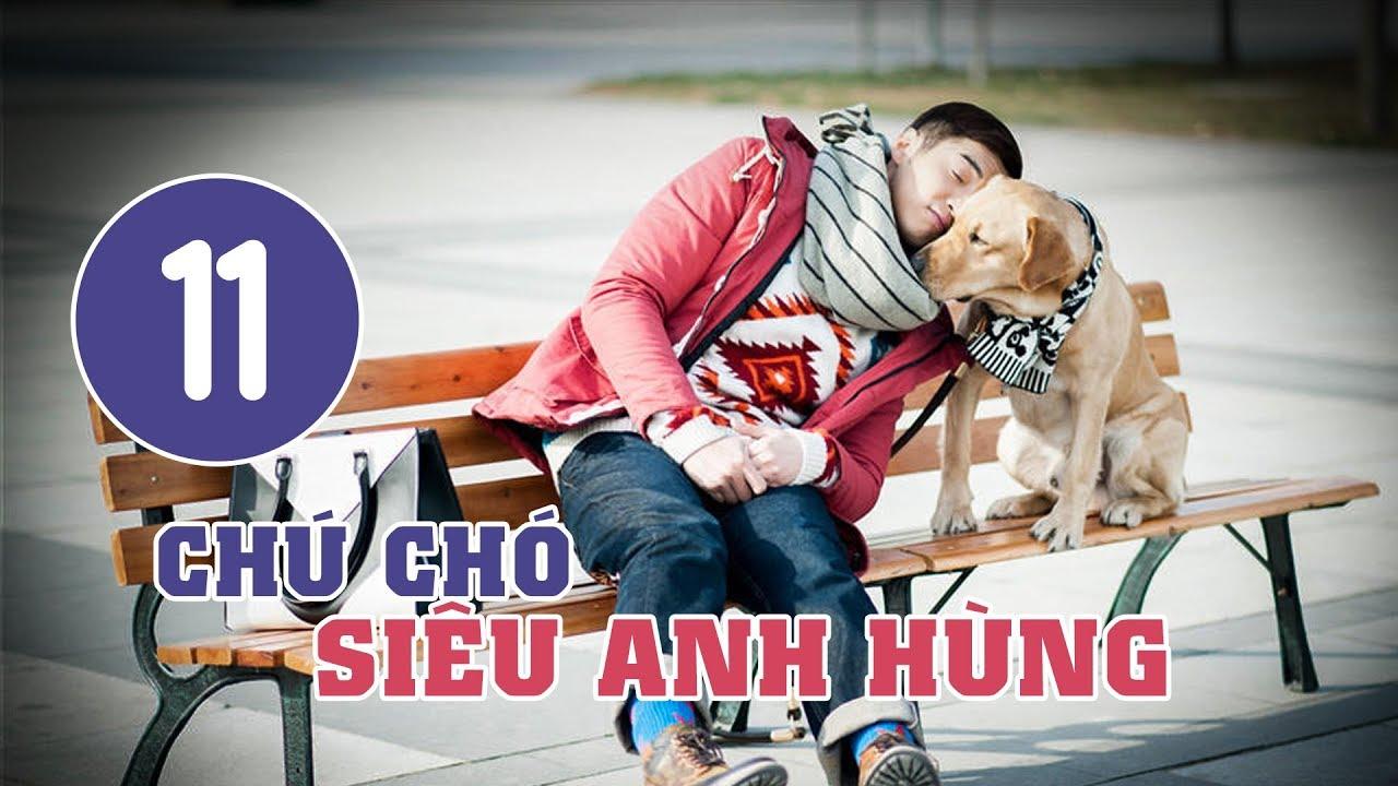 image Chú Chó Siêu Anh Hùng - Tập 11 | Tuyển Tập Phim Hài Hước Đáng Yêu
