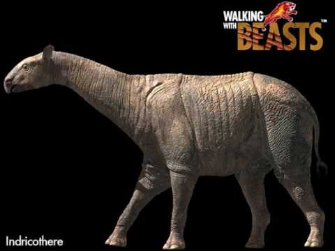 Walking with Beasts Tribute - YouTube