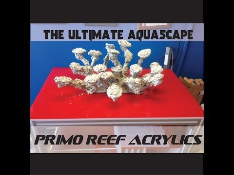 The ULTIMATE Aquascape