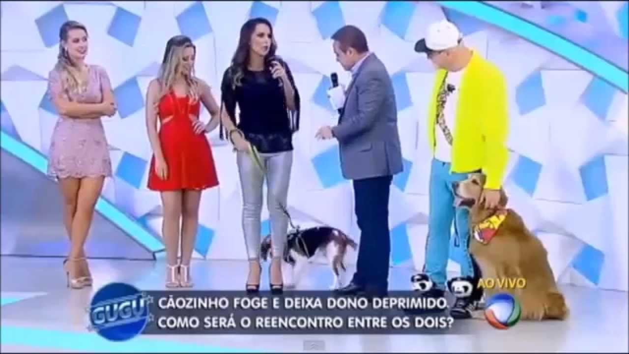 Dolce cane- luxury for dogs no Programa do Gugu Tv Record