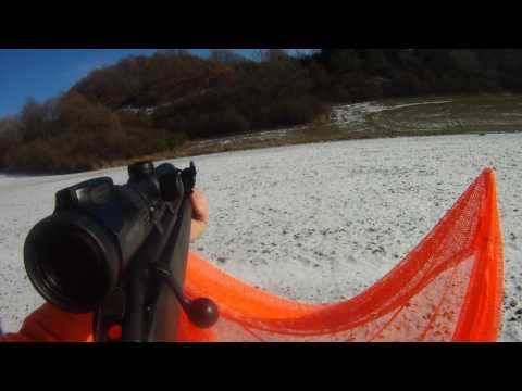 Drückjagd Schwarzwild / Driven Hunt Wild Boar / Drivjakt vildsvin