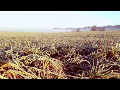James Vincent McMorrow - We Don't Eat (Plassix & staenki Edit) HQ Video