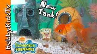 HobbyFish + SpongeBob in NEW TANK! Bikini Bottom Fish Tank by HobbyKidsTV
