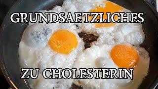 Übersicht Cholesterin! Was bedeuten die Cholesterinwerte LDL & HDL? Und wie Cholesterin senken?