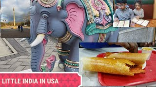VLOG | A DAY IN LITTLE INDIA IN USA | NEW JERSEY | priyameena manoharan