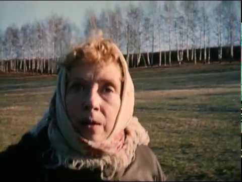 Курочка Ряба 1994