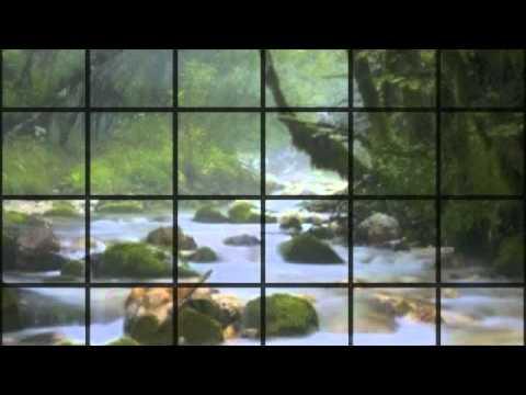 Orinoco Flow ~ Celtic Woman cover