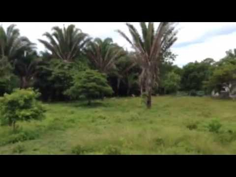 Beach properties for sale La Ceiba Honduras
