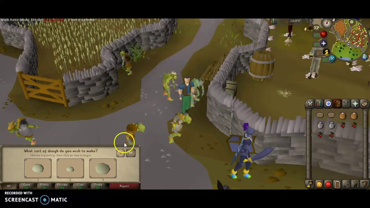 OSRS - How to make a Redberry Pie (IRONMAN)