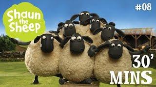 Những Chú Cừu Thông Minh - Tập 8 [30 phút]