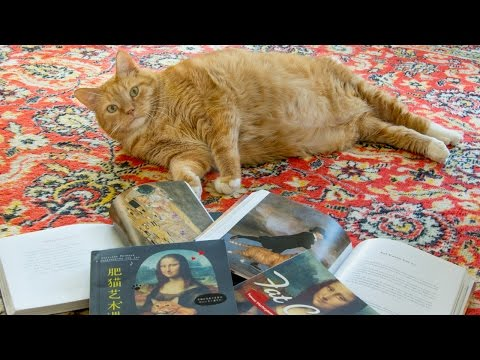 zarathustra-the-cat-examines-fat-cat-art-book