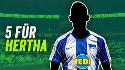 Hertha BSC: Meisterschaft 2025! 5 Transfers für den Big City Club!