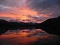 watch he video of Peel Watershed Wildlife 2012