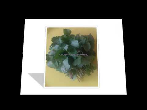 Medicinal plant  Names & images , how to differentiate medicinal keerai KARISALANKANNI 1| BRAHMI 2