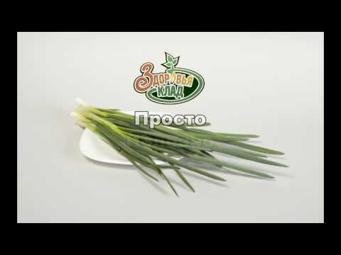 АэроСАД Здоровья КЛАД: зеленый лук