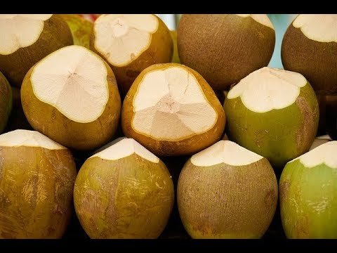 When is the Best Time to Drink Coconut Water | All About your Health