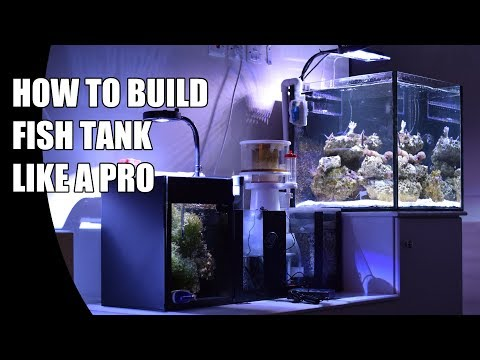 How To Build A Fish Tank With Internal Overflow For Saltwater