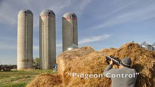 Johns Farm Silos Collapse!  Feb2018