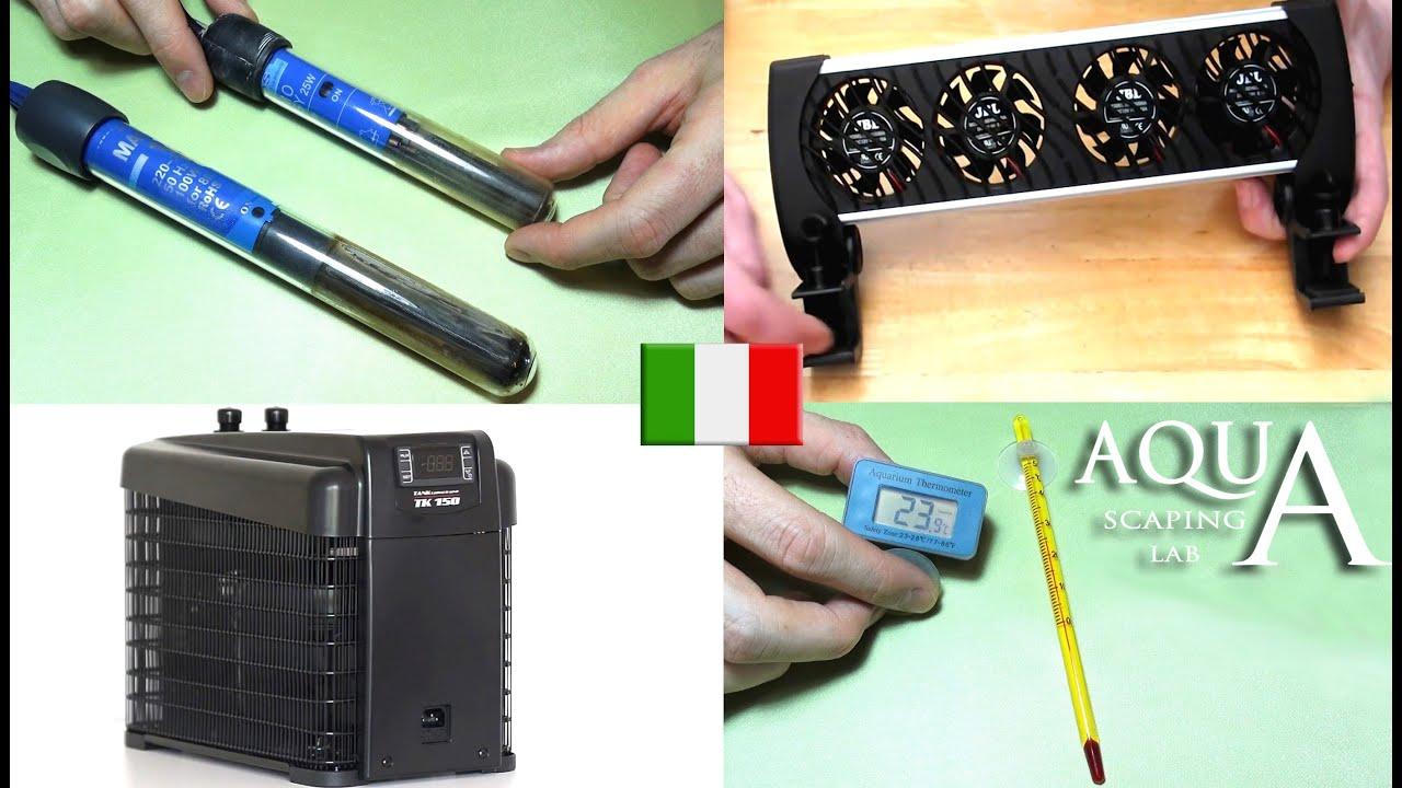 Aquascaping lab gestione della temperatura in acquario for Temperatura acquario