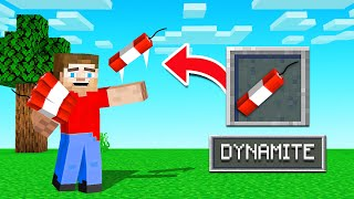 10 Of The COOLEST Items We NEED In MINECRAFT!