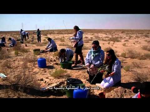 Kuwait Energy: Green Wall Documentary كويت إنرجي: سور الكويت الأخضر