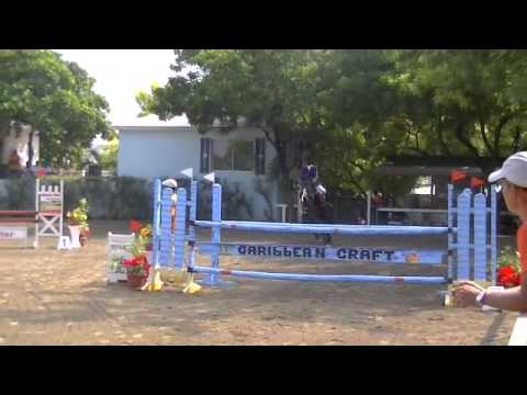 C3 FEI WJC Haiti World Jumping Challenge 2013 David & Don Lucas Cat C 3