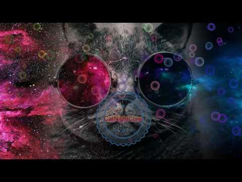 Cat Nightcore- (syn Cole Ft Joshua Radin) - Follow Me