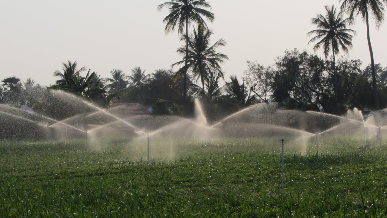 Permanent Sprinkler System Thumba Agro Tech Palani