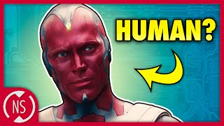 How VISION Compares to Humans! || NerdSync