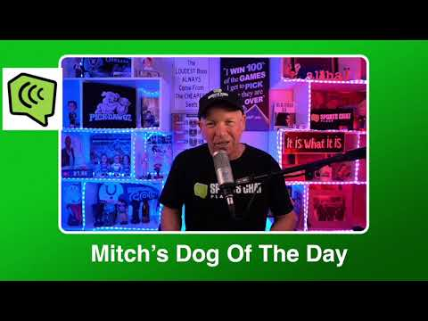 Mitch's Dog of the Day 3:2:21: Free College Basketball Pick CBB Picks, Predictions and Betting Tip