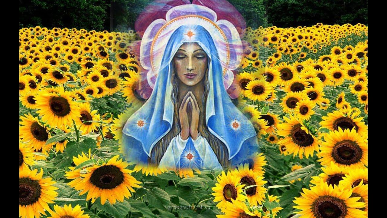 Resultado de imagem para Mãe Divina