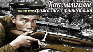 Как монголы сражались с фашистами - Монголия помогла в ВОВ СССР больше, чем США - военные истории .