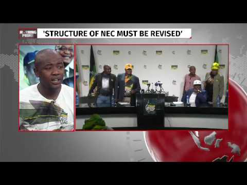 ANCYL's Mlondi Mkhize on calls for an early conference
