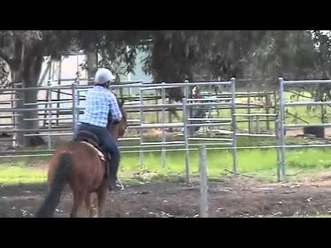 Riding Esper.m4v